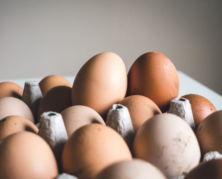 Komoly mulasztási bírsággal járhat az élelmiszerlánc-felügyeleti díj fizetésének elmulasztása – HANGANYAG