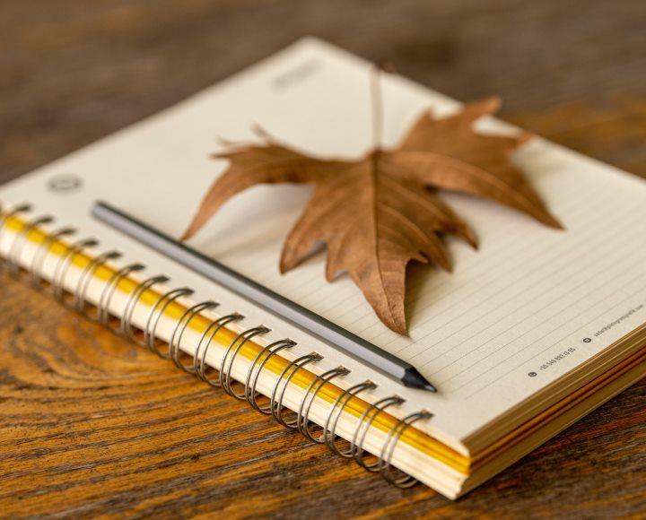 2019 autumn tax law amendments in Hungary