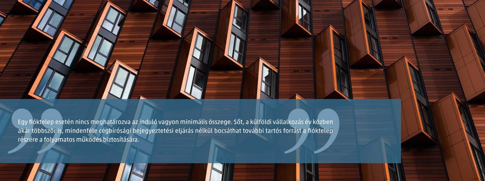 Külföldi székhelyű vállalkozás magyarországi fióktelepe